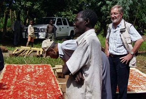 Ton Benink (right) of Griffin International with Growers of Birdseye Chiles in Malawi