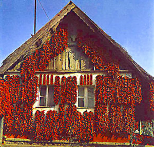 Paprika house in Kalocsa.