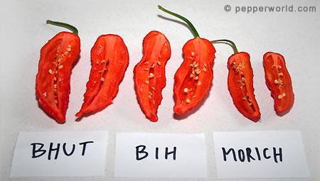 Bhut Jolokia, Bih Jolokia, and Naga Morich^cut open
