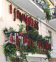 Chiles drying on a balcony
