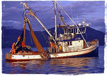 The Home Shore fishing