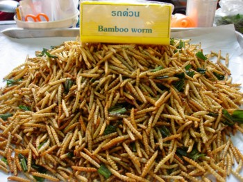 Bamboo Worms