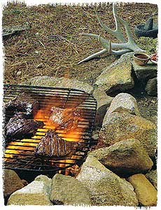 Venison steaks on the grill