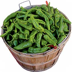 Green New Mexican Chiles