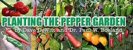 Planting the Pepper Garden, by Dave DeWitt and Dr. Paul W. Bosland