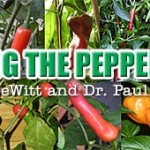 Selecting the Right Peppers for Your Garden