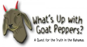 What's Up with Goat Peppers? A Quest for the Truth in the Bahamas