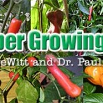 Maximizing Your Pepper Pod Yield