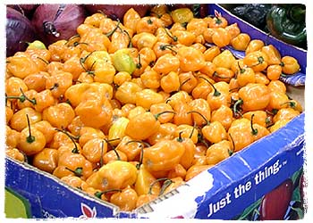 Habaneros in the Market