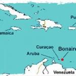 Bonaire: In Pursuit of Pika