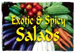 Exotic & Spicy Salads