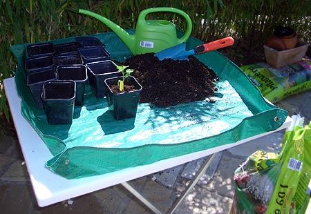 Flexible Soil Tray