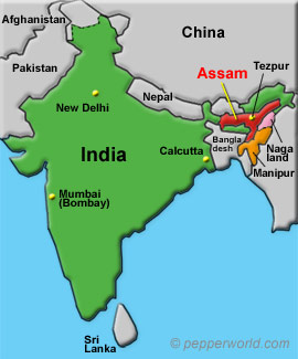 India, northeastern Staes Assam, Nagaland and Manipur, City of Tezpur