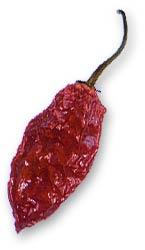 Jolokia Pod, Dried