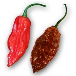 How to Cook with the Superhot Chiles