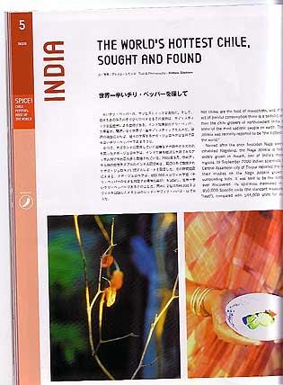 Japanese Paper Sky Magazine