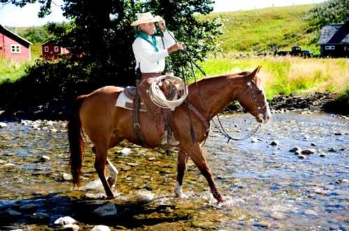 A Brazilian Gaucho cowboy