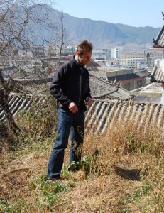 A small chile patch in Lijiang
