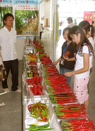 Pepper producer from China's westernmost region of Xinjiang, adding local flair through traditional costume - and internationality by offering Pasilla peppers