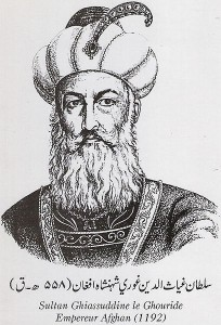 This sultan ruled Afghanistan in 1192