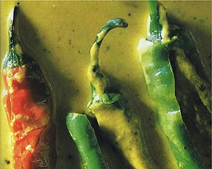 Mild Chiles in a Nutty Sauce