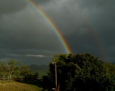 Italian Rainbow