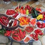 Roasting, Peeling, and Freezing Chiles