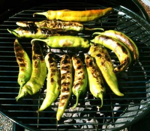 roasted chile pods