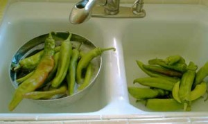 washing green chile