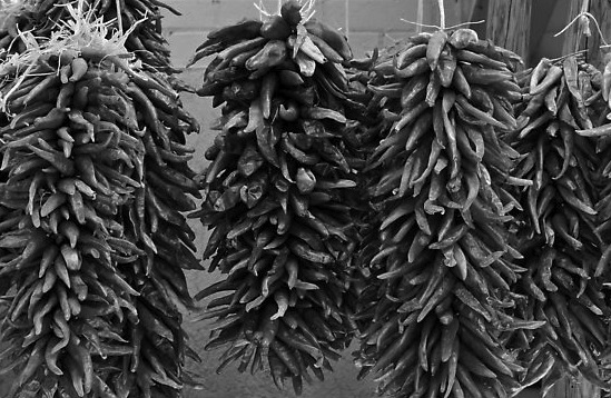 Ristras for Sale, Old Town c. 1951