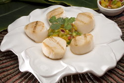 Grilled Scallops with a Rocotillo Mango Relish