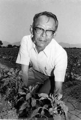 Roy Nakayama