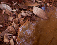 chimayo chocolate mousse