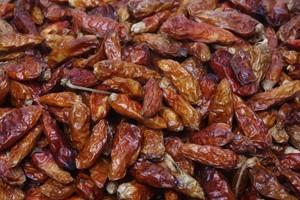 piquin chiles
