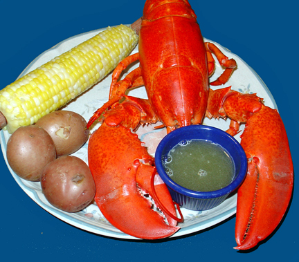 Plated Lobster