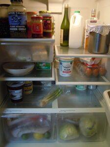 fridge curry